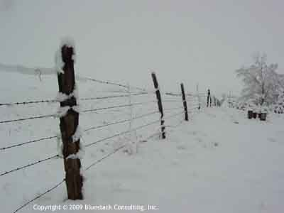 Barbwire fence in snow